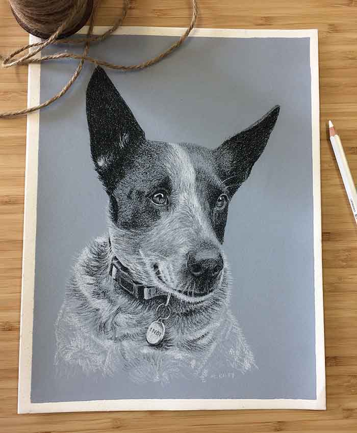 design, dogs, drawing