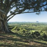 The Gourmet Trails of the Sunshine Coast