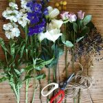 Why you'll love a perfumed garden