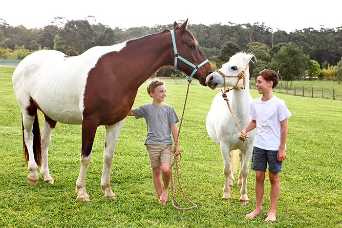 children with the horses