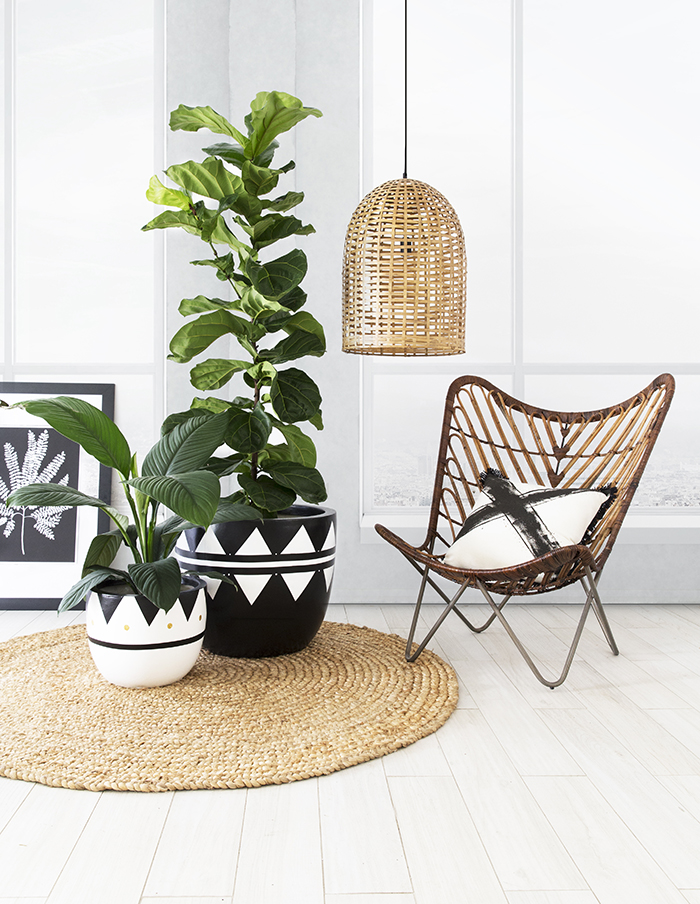 Arc + Family black and white pots
