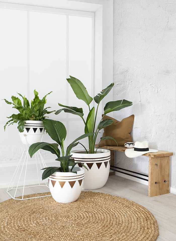 Arc + Family white and gold pots
