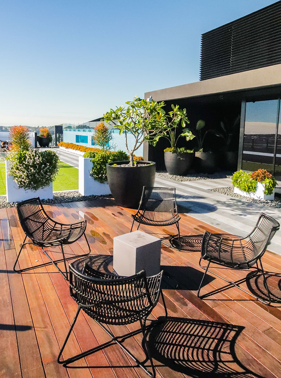 South City Square rooftop lounge