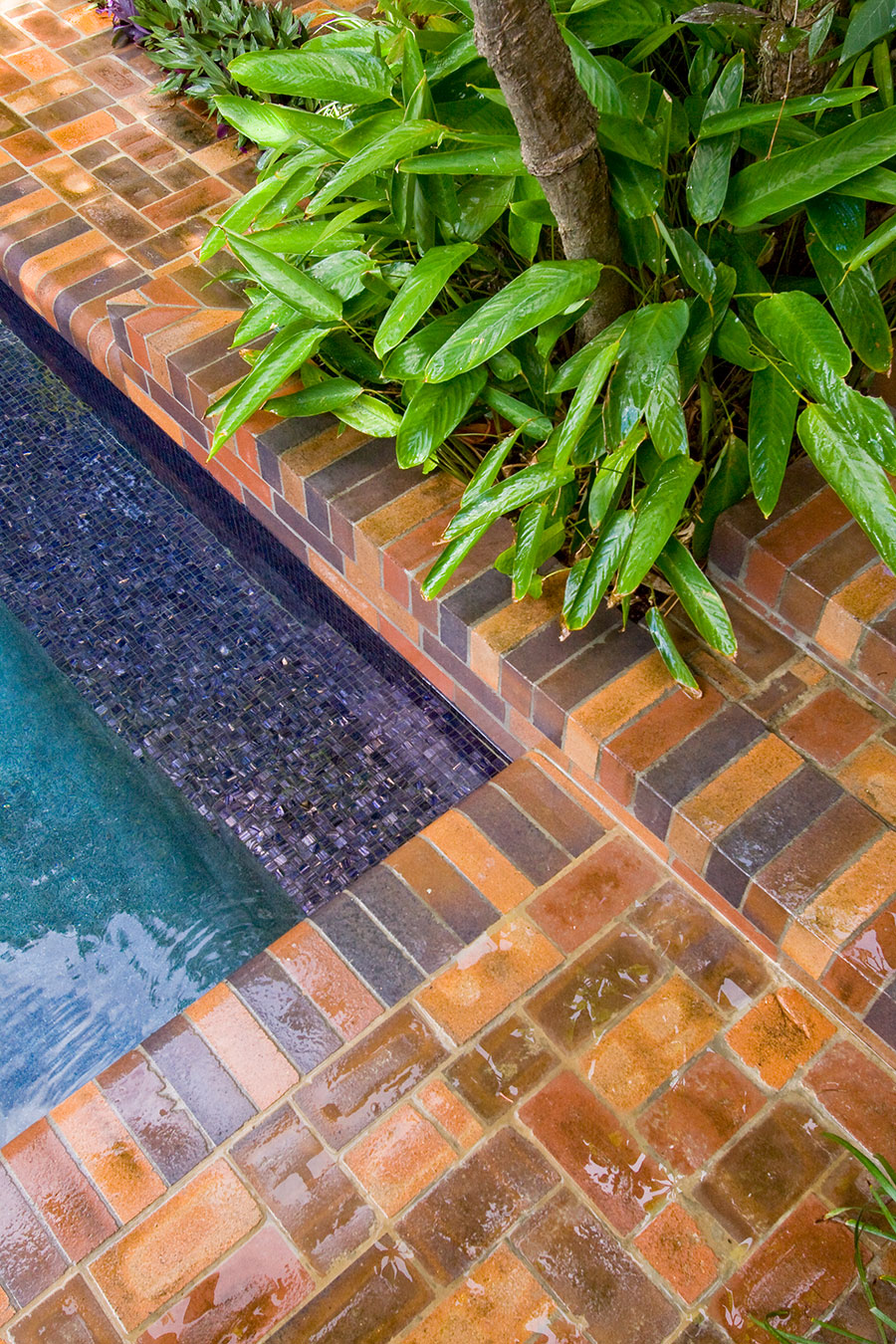 Argo Architects courtyard pool 5