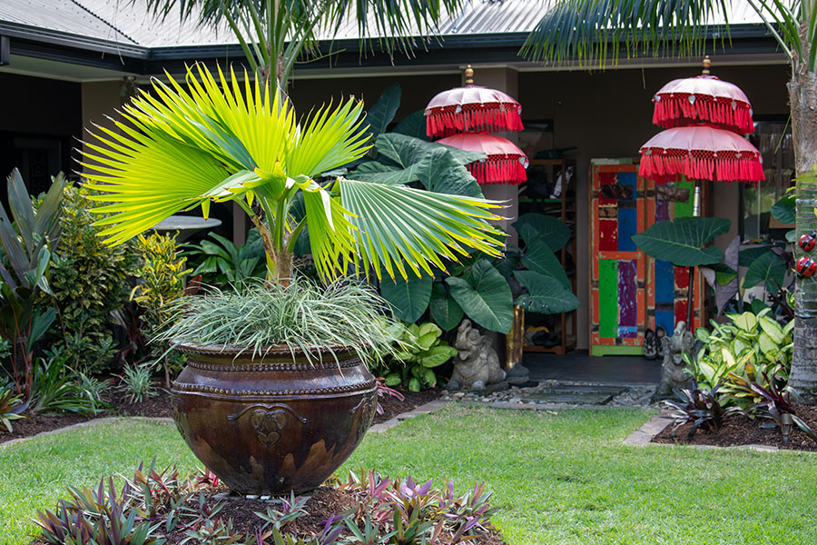 Bioscapes Bali style garden Tropical Living